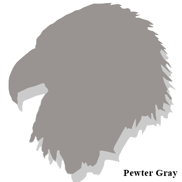 Pewter Gray